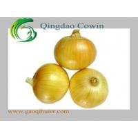 Buy cheap Yellow onions product