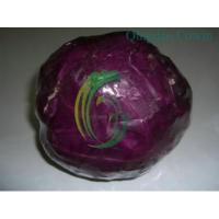 Buy cheap purple cabbages.exporter product