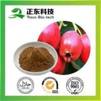 Hawthorne Extract strengthening stomach promoting digestion