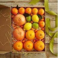 Buy cheap Simply Fresh Winter Citrus NO.2 shenzhen gift hamper delivery product