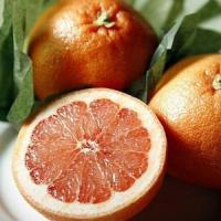 Buy cheap SUGAR RED GRAPEFRUIT NO.35 deliver gift hamper to shenzhen product