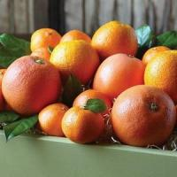 Buy cheap CITRUS MEDLEY NO.38 deliver gift hamper to shenzhen product