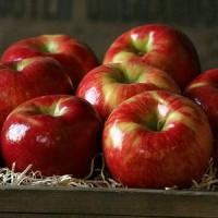 Buy cheap HONEYCRISP APPLES NO.32 deliver gift hamper to shenzhen product