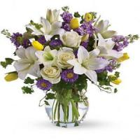 Buy cheap Mother's Day Spring Waltz.No.103 delivery flower to australia sydney product