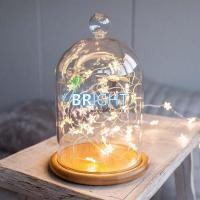 Buy cheap Globe string lights Bell Jar Fairy Lights, Warm micro Lights from wholesalers