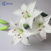 Buy cheap Artificial flower 5 Heads PU Lily product
