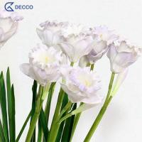 Buy cheap Artificial flower PU Daffodil from wholesalers