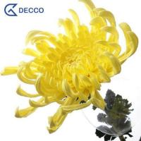 Buy cheap Artificial flower PU Chrysanthemum from wholesalers