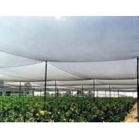 Buy cheap Anti-Hail Net made of high-density polyethylene, resistance to stretching product