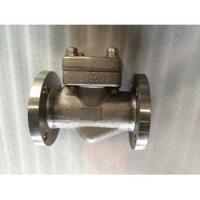 Check Valves Position Check Valve, A182 F51, PN 150, Ring Type Joint