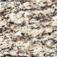 Buy cheap China Granite tiger white product