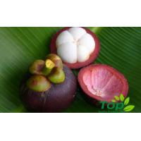 Buy cheap FRUITS (29) Mangosteen from wholesalers