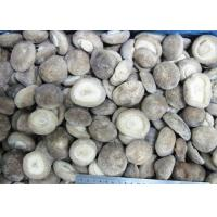Buy cheap FROZEN MUSHROOM Product  IQF SHIITAKE-WHOLE 4-6CM from wholesalers