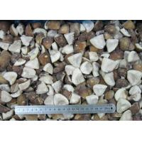Buy cheap FROZEN MUSHROOM Product  IQF Stropharia-caps cut 2x3cm from wholesalers