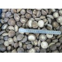 Buy cheap FROZEN MUSHROOM Product  IQF SHIITAKE WHOLE 2-4CM from wholesalers