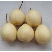 Buy cheap Century pear from wholesalers