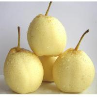 Buy cheap Pear Series Century pear from wholesalers