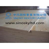 Commercial plywood Model No: pine face plywood