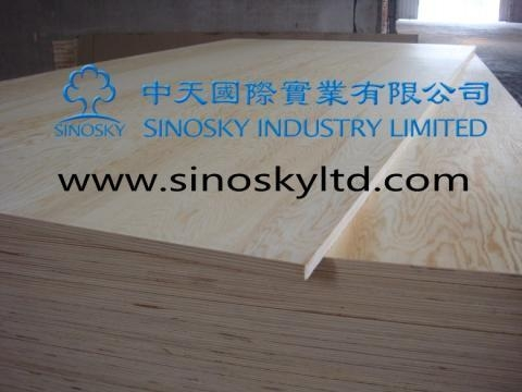Quality Commercial plywood Model No: pine face plywood for sale