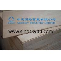 Buy cheap Commercial plywood Model No: plywood door skins product
