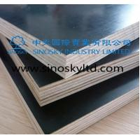 Buy cheap Film face plywood Model No: black film face plywood product