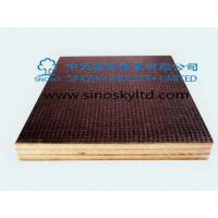 Buy cheap Film face plywood Model No: anti-slip film face plywood product