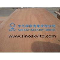 Buy cheap Commercial plywood Model No: keuring face plywood product