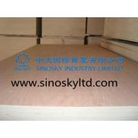 Buy cheap Commercial plywood Model No: okoume face plywood product