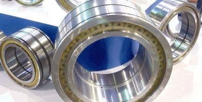 Quality Full roller bearings (Double Row Full Complement Cylindrical Roller Bearings) for sale