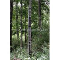 Buy cheap Tree Stand product