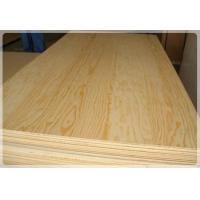 Buy cheap COMMERCIAL PLYWOOD Pine Plywood from wholesalers