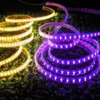 CE & RoHS approved! LED Strip Light SMD 5050 Double Row Purple