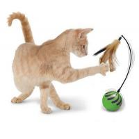 Buy cheap M-1086 Random Motion Cat Toy product