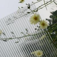 Buy cheap anti-fog polycarbonate sheet for greenhouse product