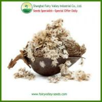 Buy cheap High Quality Chinese Paulownia fortunei(Seem.)Hemsl seeds for planting product