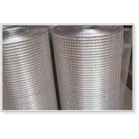 AISI304 AISI316 Stainless Steel Wire Mesh Welded Mesh Sheets