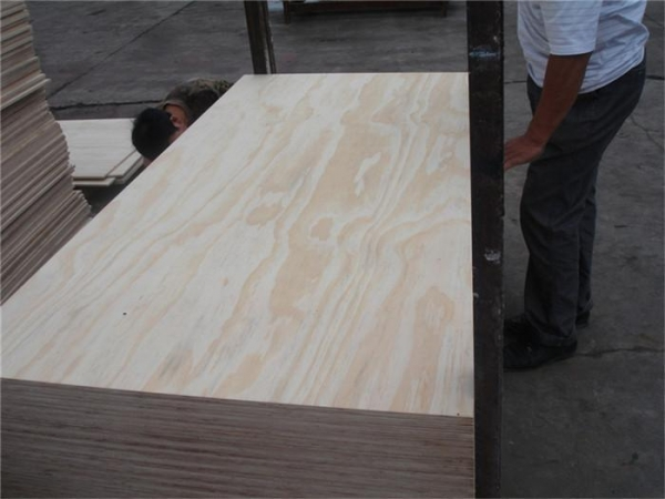 Quality Pine Plywood for sale