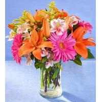Buy cheap flowers dance product