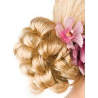 Buy cheap Grace Bun Hairpiece by EasiHair from wholesalers