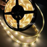 DC12V/24V LED Strip Light DC12/24v SMD 2835 Led Strip Lights