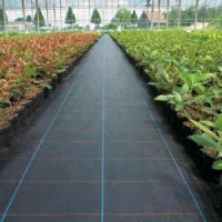 Buy cheap PP Woven Weed Mat Weed Barrier Fabric product
