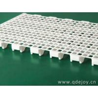 Poultry slat and support