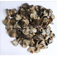 Buy cheap Oyster mushroom from wholesalers
