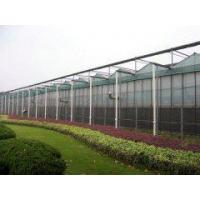 Buy cheap Tempered Glass Greenhouse from wholesalers